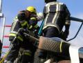 weber-rescue-days