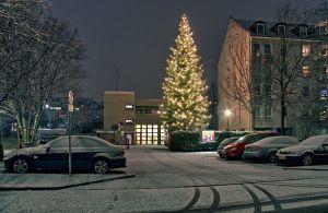 Der 20 Meter Weihnachtsbaum der FF Sendling in seiner ganzen Pracht (Foto: Horst Reinelt)