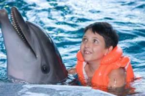 Neuen Mut gewinnen mit Delfinen, dolphin aid machts möglich (Foto: istockphoto/Pumba1)