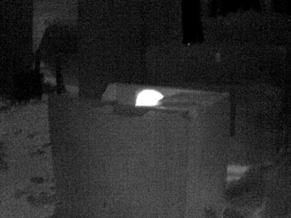 Eine Person sitzt in einer Pappkiste, der Kopf (weiß) schaut aus der Kiste heraus und ist gut zu erkennen. Der Rest des Körpers wird durch die Pappe abgeschirmt!