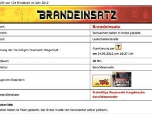 Screenshot: kleinezeitung.at