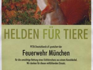 Eichörnchenrettung München